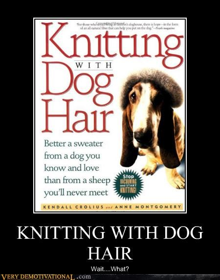 book,dogs,hair,idiots,knitting