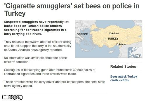 Probably Bad News: Not The Bees!