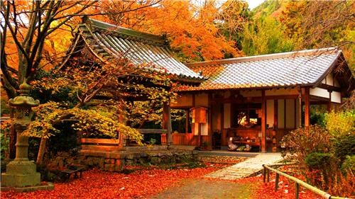 architecture,asia,autumn,destination of the week,getaways,gold,Japan,konzoji temple,leaves,orange,red,temple,vivid colors