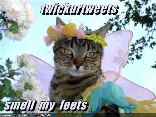 twickurtweets   smell  my  feets