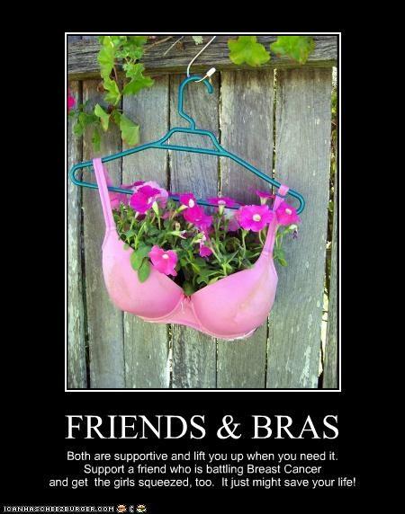 FRIENDS & BRAS