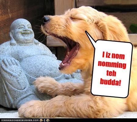 I iz nom nomming teh budda!