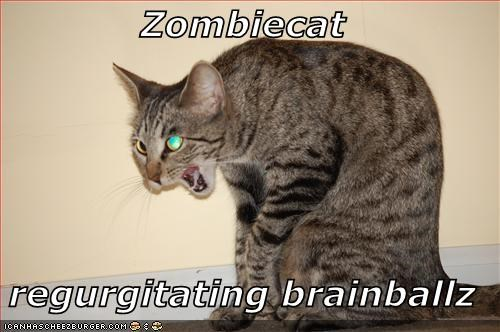 Zombiecat  regurgitating brainballz