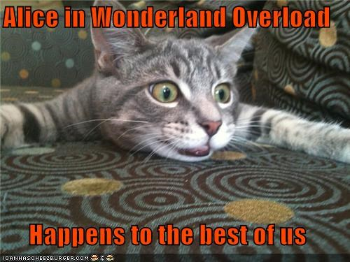 alice in wonderland,best,best of us,caption,captioned,cat,freaking out,happens,overload