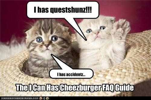 The I Can Has Cheezburger FAQ Guide