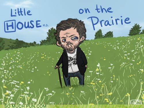 double meaning,Hall of Fame,house,literalism,little,little house on the prairie,novel,prairie,title