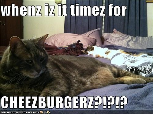 whenz iz it timez for  CHEEZBURGERZ?!?!?