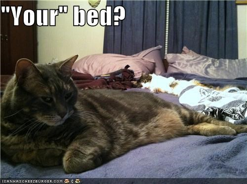 """Your"" bed?"