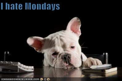 blah,Case Of The Mondays,do not want,exhausted,french bulldogs,i hate mondays,monday,no,Sad,tired