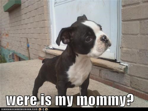 were is my mommy?