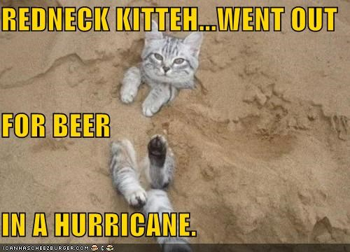 REDNECK KITTEH...WENT OUT FOR BEER IN A HURRICANE.