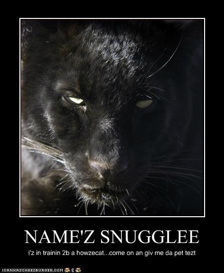 NAME'Z SNUGGLEE