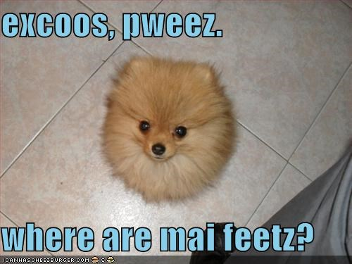 excoos, pweez.  where are mai feetz?