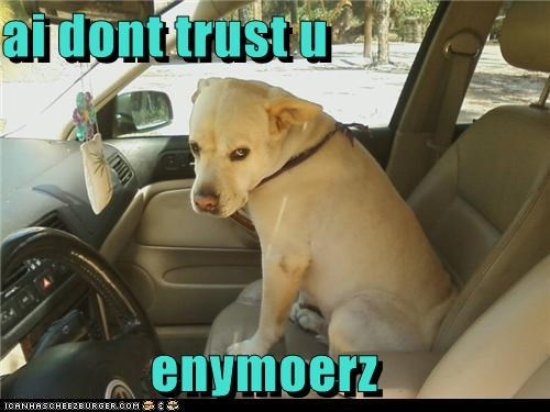 ai dont trust u  enymoerz