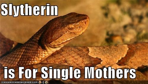 Slytherin  is For Single Mothers