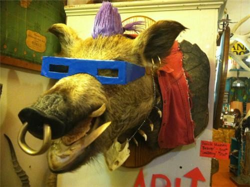 Taxidermied Ninja Turtles Villain of the Day
