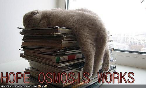 HOPE OSMOSIS WORKS