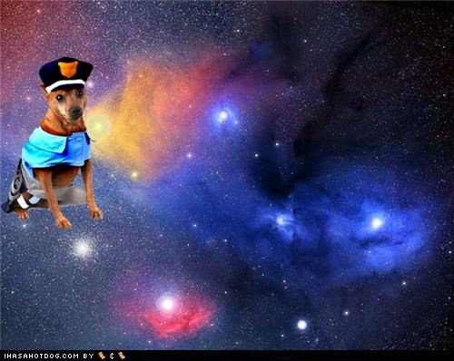 DOGS + COSTUMES + SPACE = AWESOME