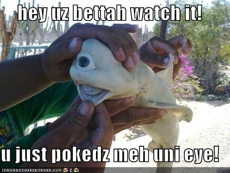 hey uz bettah watch it!  u just pokedz meh uni eye!