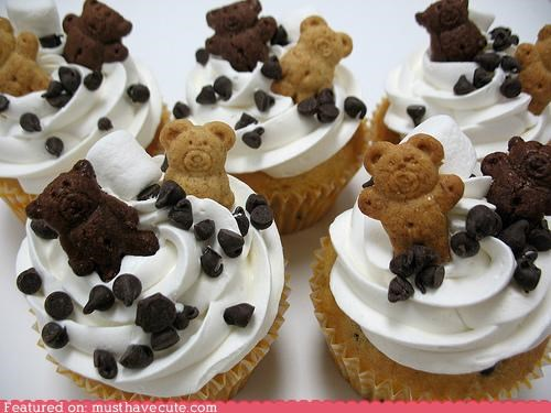 chocolate chips,cookies,crackers,cupcakes,epicute,frosting,teddy grahams