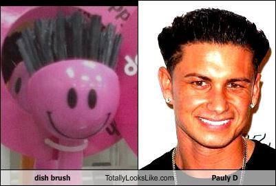 Dish brush Totally Looks Like Pauly D