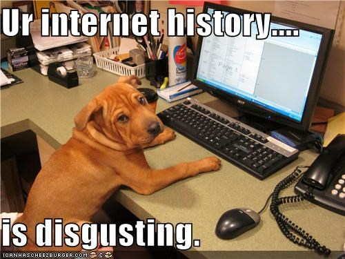 bad,computer,disgusting,gross,i had no idea,internet history,mixed breed,shar pei