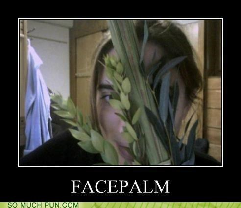 double meaning,face,facepalm,literalism,palm