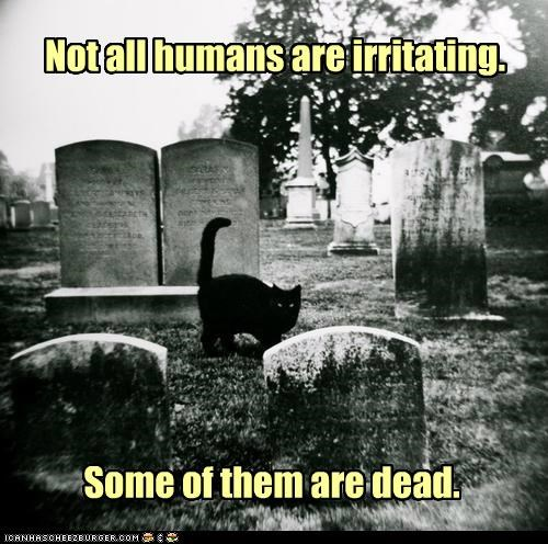 Not all humans are irritating.