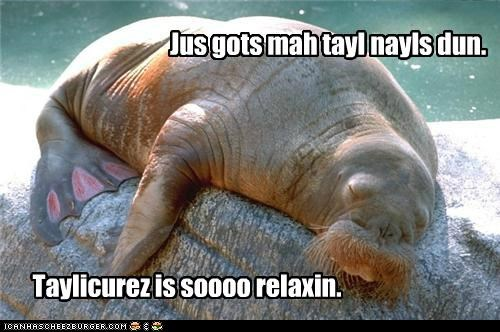 manicure,pampered,pedicure,relaxation,relaxing,tail nails,walrus