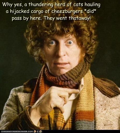 Cats,cheezburgers,doctor who,thataway,tom baker