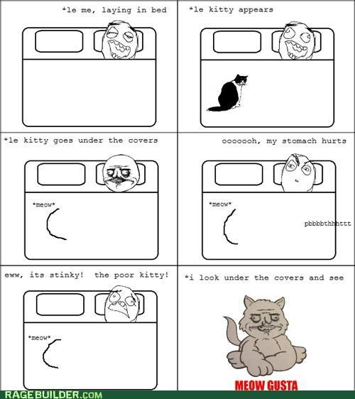 Meow gusta stinky
