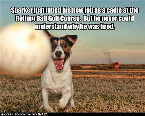 Sparker just lubed his new job as a cadie at the Rolling Ball Golf Course.  But he never could understand why he was fired.