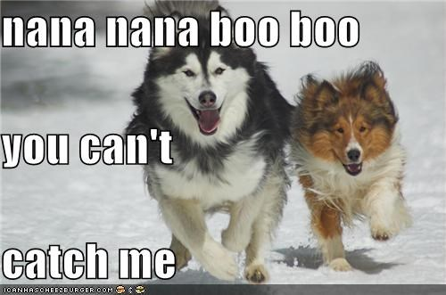 nana nana boo boo you can't catch me