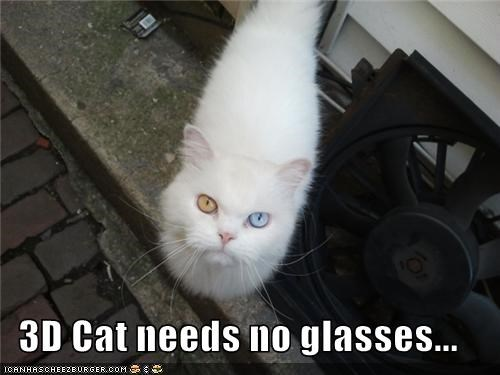 3D Cat needs no glasses...
