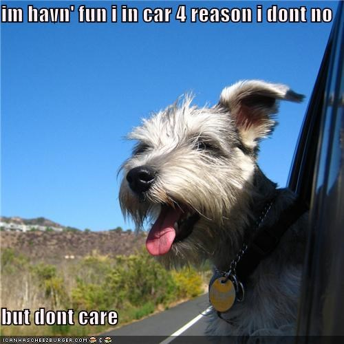 im havn' fun i in car 4 reason i dont no  but dont care