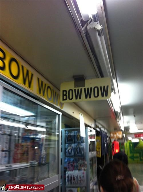 bow wow,pet store,strange store names