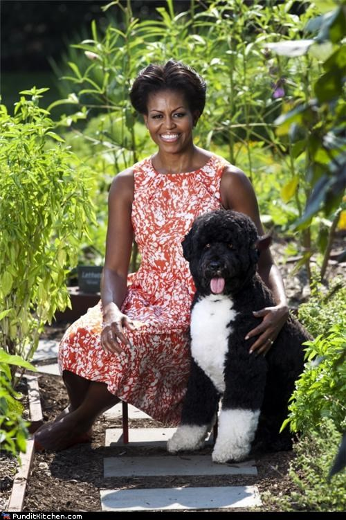 The First Lady, Minus Her Beau, With Bo