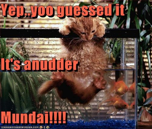 Yep..yoo guessed it It's anudder Mundai!!!!