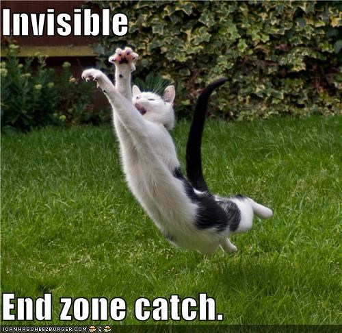 caption,captioned,cat,catch,diving,end zone,football,invisible,jumping
