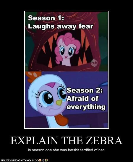 EXPLAIN THE ZEBRA