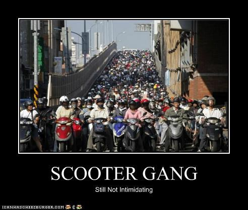 gangs,political pictures,scooters