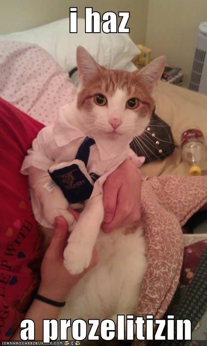 bible,caption,captioned,cat,has,I,proselytizing,religion,suit,tie