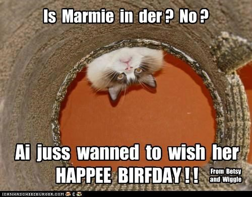 Happy Birthday,Marmie!