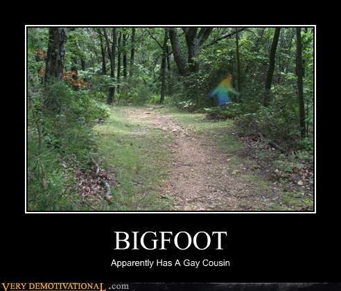 bigfoot,cousin,gay,hilarious,rainbow,wtf