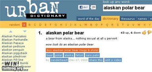 definition,not sexy,polar bear,slang,urban dictionary