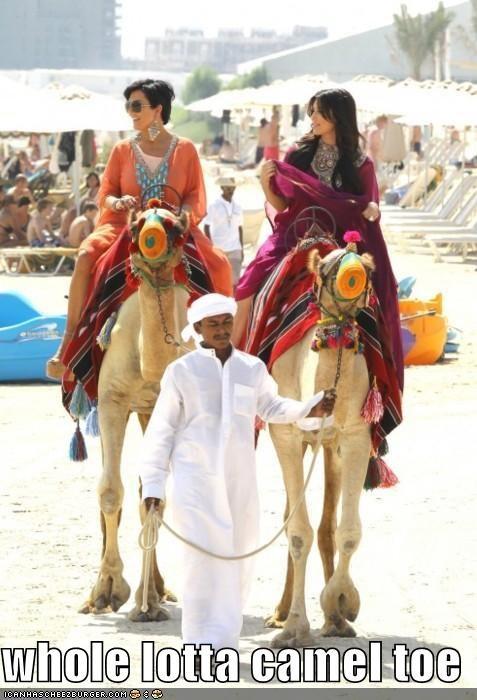 whole lotta camel toe
