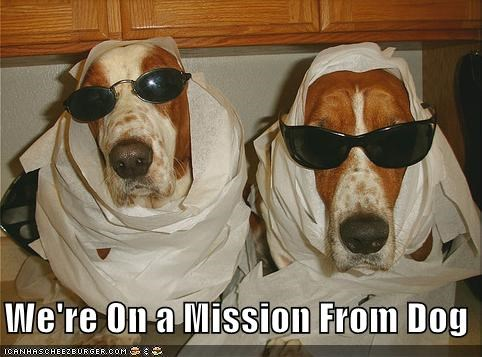 We're On a Mission From Dog