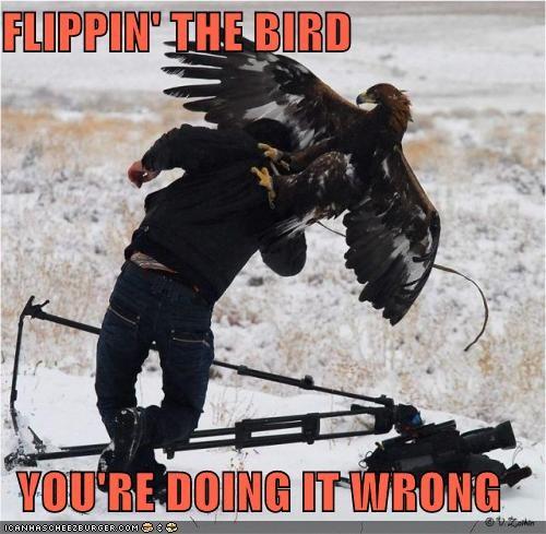 In Soviet Russia, Bird Flip You