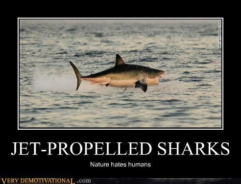 humans,jet propelled,sharks,Terrifying