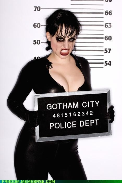 catwoman,comic,cosplay,cover art,lineup